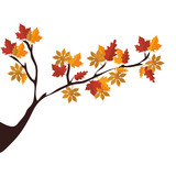 tree branch with autumn season dry leaves vector illustration