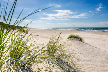 Fototapeta Mrzeżyno plaża