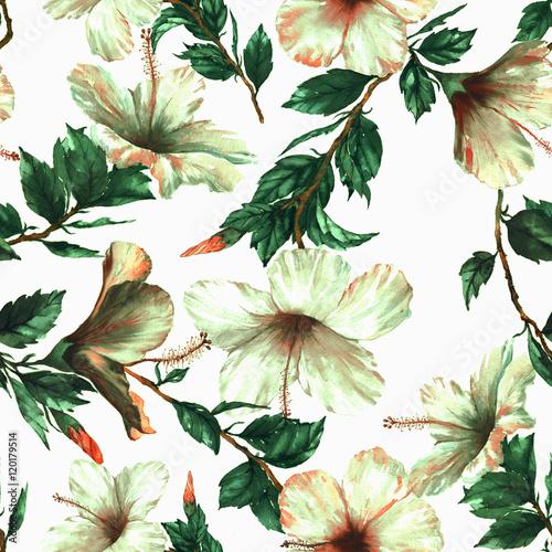 Stoffe zum Nähen Handgezeichnete Aquarell nahtlose Blumenmuster mit den zarten weißen Hibiskusblüten auf dem weißen Hintergrund im Vintage-Stil. Natürlichen tropischen und lebendige wiederholten Druck für Textilien, Tapeten etc.