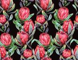 Hand-drawn watercolor seamless tropical pattern with red protea flowers on the black dark background. Colorful exotic summer print with floral elements for the textile and wallpapers.