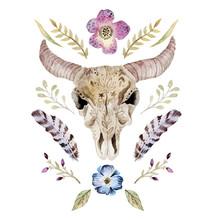 Aquarell Vektor Boho Illustration mit Schädel