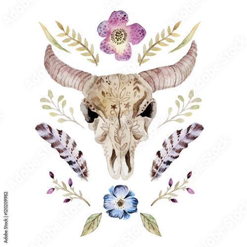 Watercolor  vector boho illustration with skull - 120209982