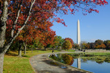 "Washington DC - Washington Monument from Constitution Gardens in Autumn 120350786,5 Sterne Vektor"""