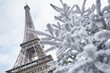 Christmas tree covered with snow near the Eiffel tower