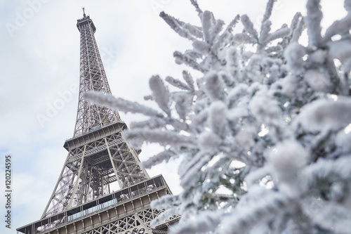 Christmas tree covered with snow near the Eiffel tower Photo by Ekaterina Pokrovsky