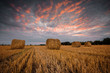 Autumn field / Landscape with a field full of hay bales at sunset