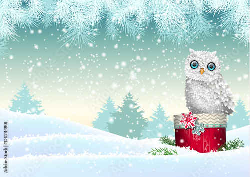 Fotobehang Lichtblauw Christmas theme, white owl sitting on red gift box in snowy landscape, illustration