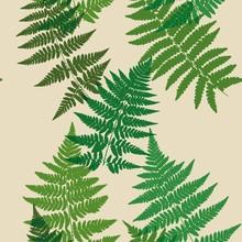 Nahtlose Muster von Farn Blätter. Vektor.
