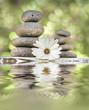 piedras y flores reflejadas en el agua