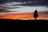 Cowboy on a horse - 120420388