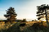 Autumn evening in Val Rosandra