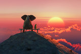 Elephant and dog sit on a mountain top