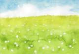 クローバーの咲く野原
