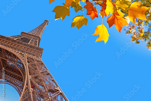 Fridge magnet Eiffel tower and autumnal leaves, Paris, France