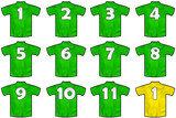 12 twelve green sport shirts as a soccer,hockey,basket,rugby, baseball, volley or football team t-shirt. Like Ireland national team