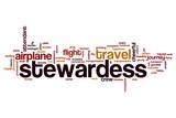 Stewardess word cloud
