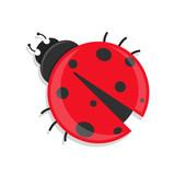 flat Vector icon - illustration of ladybug icon isolated on whit