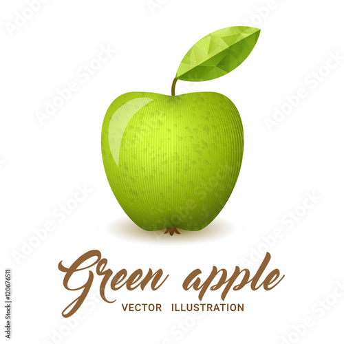 Green Apple vector illustration - 120676511