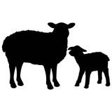 Sheep Silhouette - 120709129