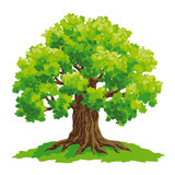 Oak tree - vector drawing