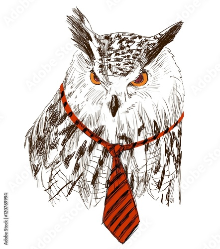 Vector sketch of owl in tie. Retro illustration - 120769994
