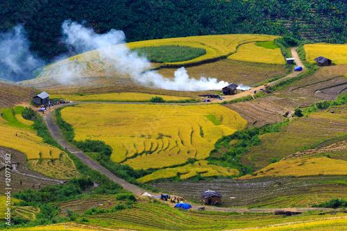 Fotobehang Beautiful terraced rice fields in Vietnam