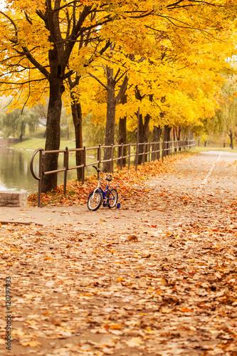Tuinposter Herfst autumn park