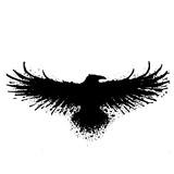 летящий ворон эскиз татуировка