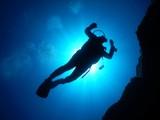 Diving - 120832543