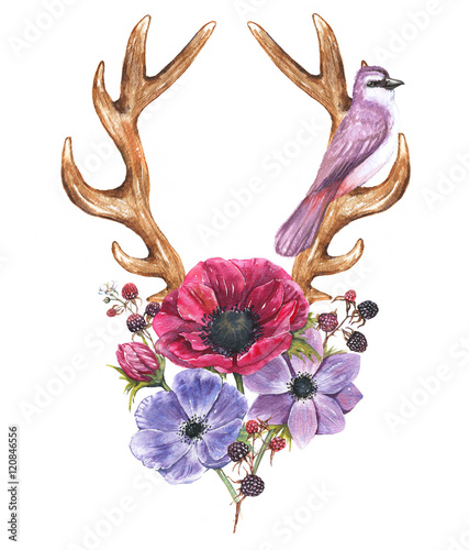 Beautiful illustration with the watercolor anemone flowers, blackberries, bird and antlers. Floral composition in boho style with stylized antlers drawing and natural elements - 120846556