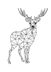 Low poly character of deer. Designs for xmas. Christmas illustration in line art style. Isolated on white background.