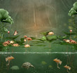 Fantasy green pond with water lilies and fishes