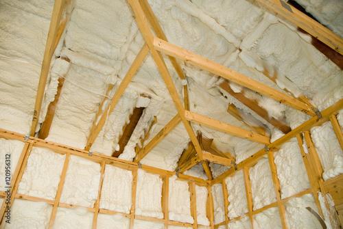 Newly sprayed insulation - 120956312