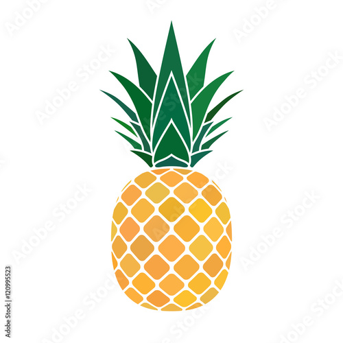 Pineapple with leaf icon. Tropical fruit isolated on white background. Symbol of food, sweet, exotic and summer, vitamin, healthy. Nature logo. Flat concept. Design element Vector illustration - 120995523