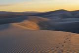 Mongolia. Sands Hongoryn ELS. Dunes.