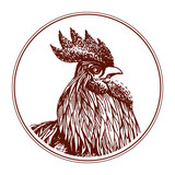 Vector rooster illustration, symbol of 2017 on the Chinese calendar.