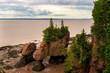 Hopewell Rocks Low Tide horizontal New Brunswick