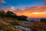 Colorful blueberry bushes are surrounded with rocky granite outcroppings at High Point State Park, New Jersey sunset - 121073554