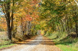 Country road on an Autumn day  - 121075156