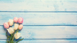 Tender white and pink spring tulips on  blue wooden background.
