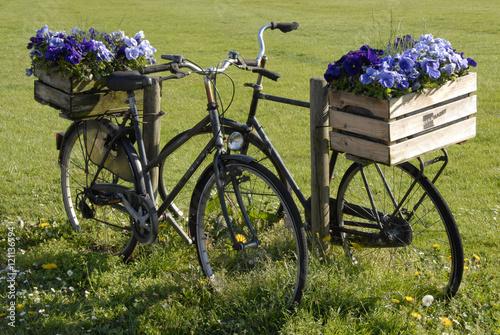 Papiers peints Nature 2 zwarte fietsen met kratten bloemen