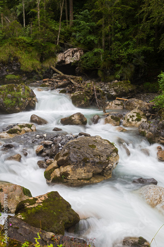 Poster fast forest river - endless stream