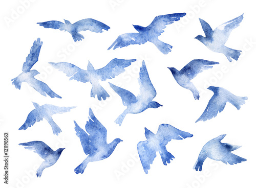 Fototapeta Abstract flying bird set with watercolor texture isolated on white background.