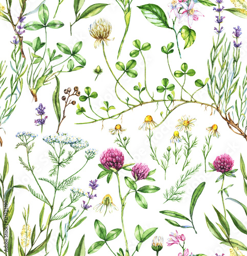 obraz lub plakat Hand-drawn watercolor seamless botanical pattern with different plants. Repeated natural background with meadow and medical plants: chamomile, trefoil, lavender, tea tree and other.