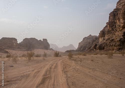 Poster vehicle tracks in desert