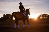 Silhouette of a woman riding horse - 121429514