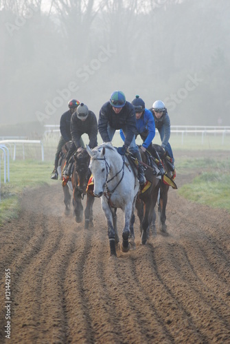 Racehorses after track exercise gallop