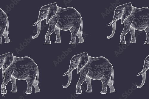 Seamless vector pattern with elephants. - 121448592