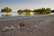 Wide angle view of beach at Fannie Bay, Darwin near sunset with contrasting green mangroves
