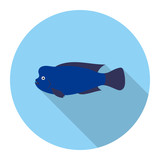 Stearocranus fish icon flat. Singe aquarium fish icon from the sea,ocean life flat.